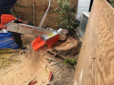 Stump Grinding 1